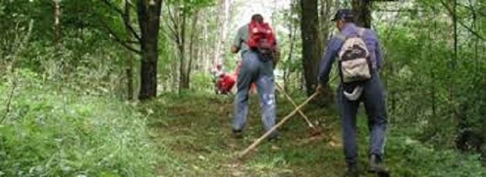 Controlli ambiente Forestali