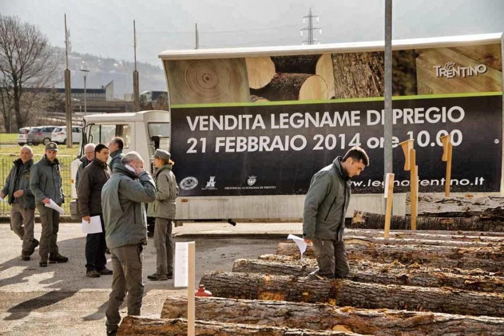 Trentino legno di pregio