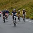 bici ciclismo stelvio