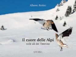 Copertina libro Alberto Pattini 1