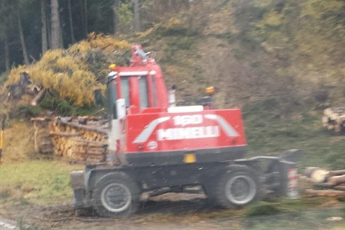 lavori disboscamento1 (1)