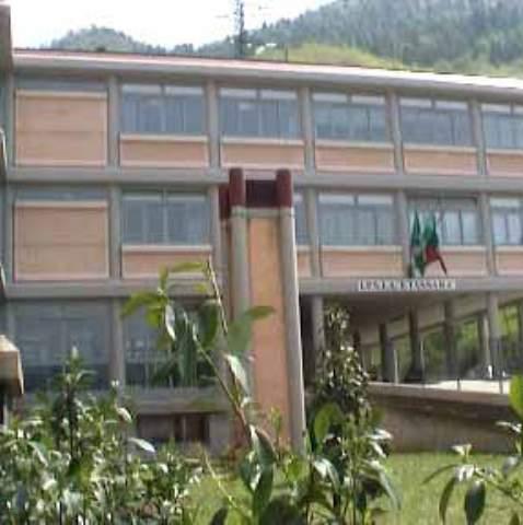 Scuola-Tassara
