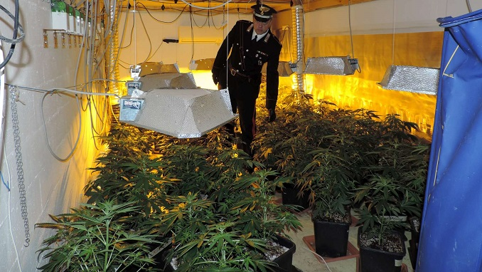 Carabinieri piante  marjiuana