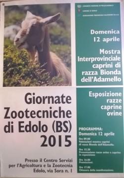 edolo manifest Zootecnia