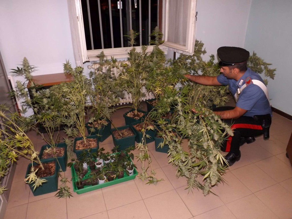 carabinieri serra