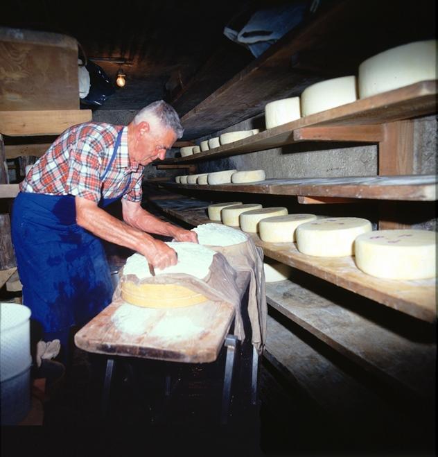 lavorazione formaggi