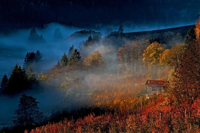 foto autunno Pino Velcani