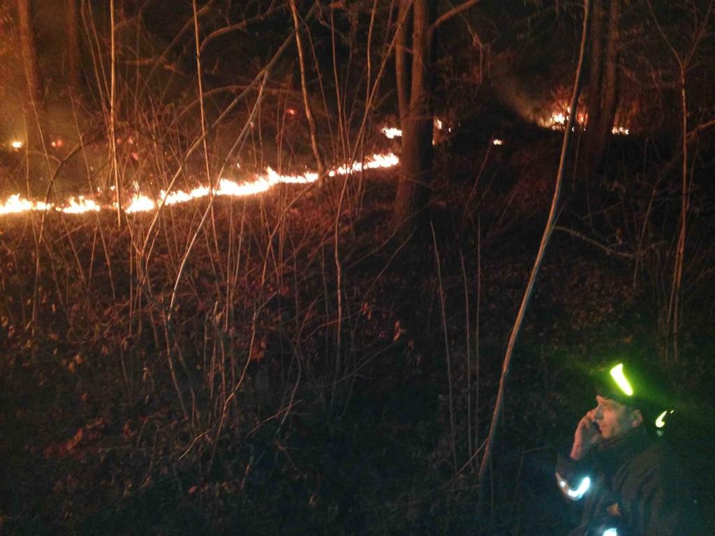 incendio malonno bosco
