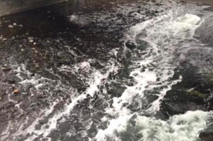 fiume oglio inquinato