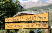 parco nazionale stelvio val di peio sole