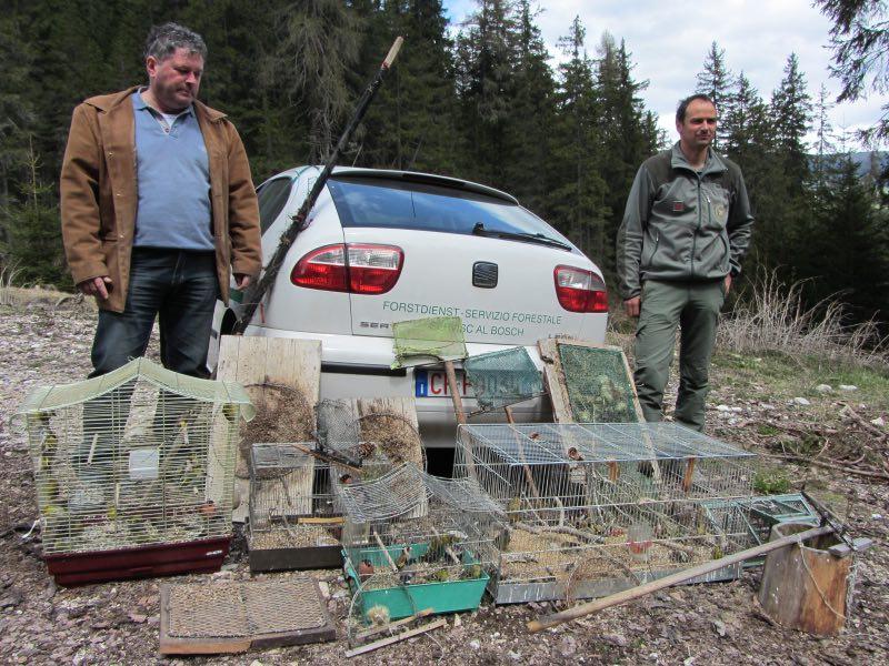 Gli uomini del Corpo forestale della Provincia con gli esemplari di uccelli sequestrati in Val Pusteria