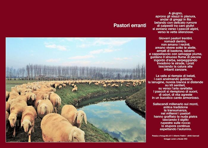 pastori erranti 1