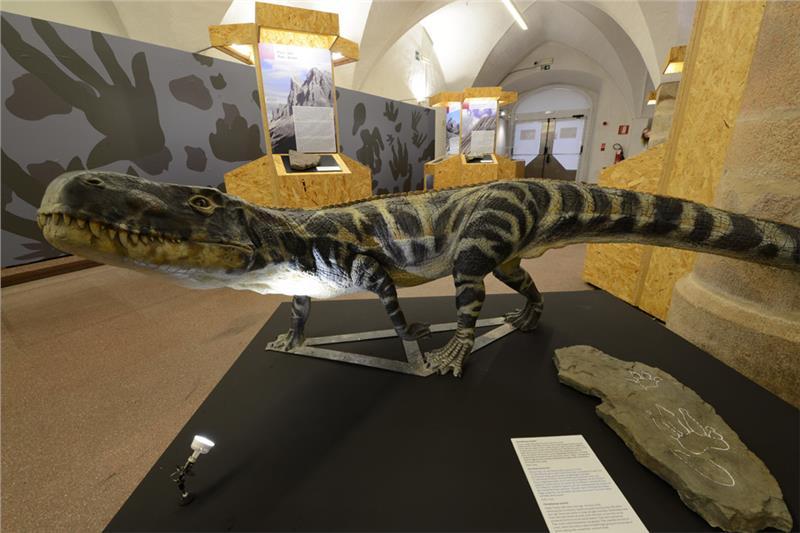 museo-ladinium