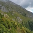 valle-camonica-boschi