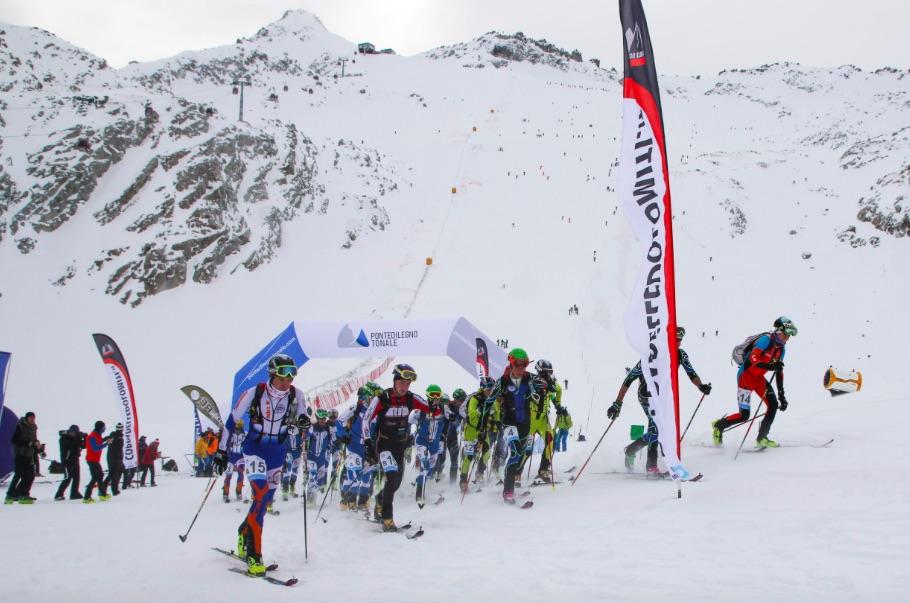 scialpinismo-adamello-ski-raid