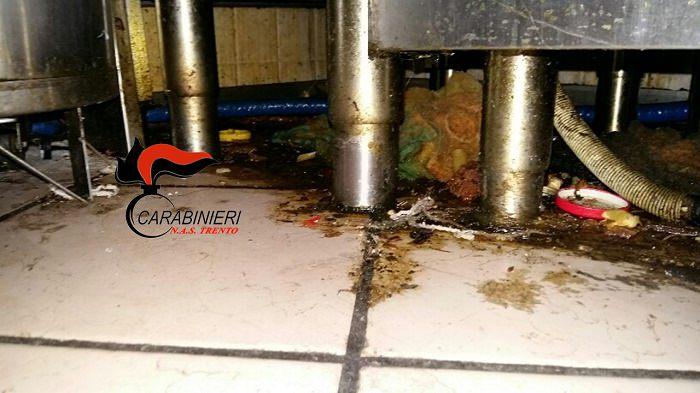 pavimento-della-cucina-sporco-nas-1