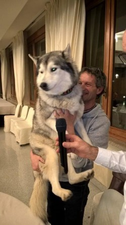 Rinaldo Marioli con il cane Keith (1)