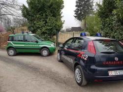 carabinieri ambient