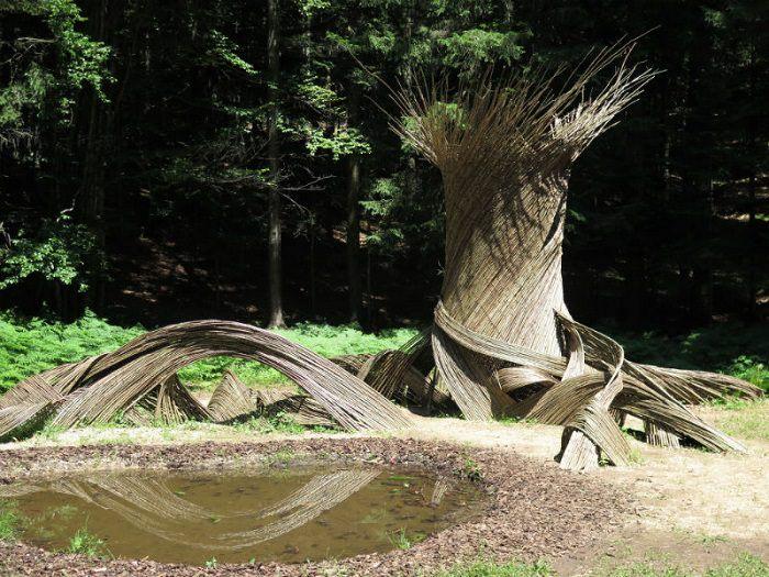 Alpe Cimbra Respiro alberi 0