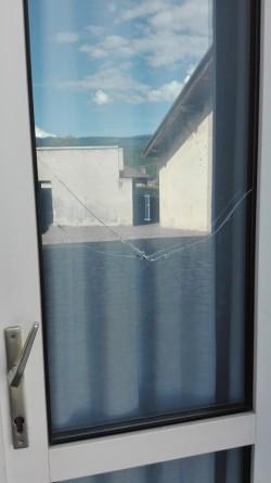vandali finestra