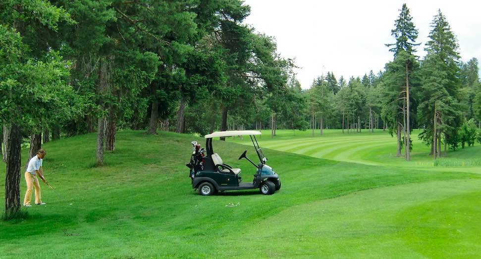 golf sarnonico