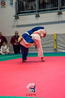 Judo Lavis