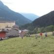Monno - Fen Fest