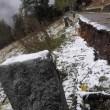 Pezzo alberi caduti e neve
