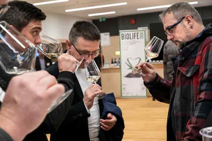 Bio-Wine-Festival 1-©- Marco-Parisi