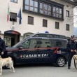 Carabinieri - cinofili