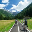 bike pista ciclabile mauro mariotti