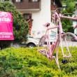 rosa bici APT Val di Sole