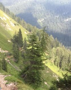 Intervento Soccorso Alpino - Trentino