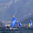 29er Eurocup•Riva del Garda 2019