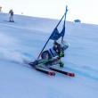 fis sci alpino cimbra folgaria