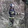 Incendio sterpaglie - Pietramurata