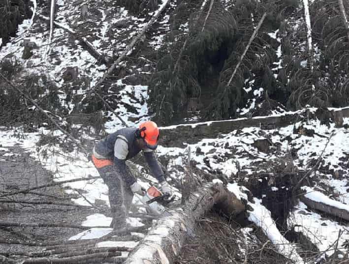 Tempesta Vaia - interventi Valle Camonica