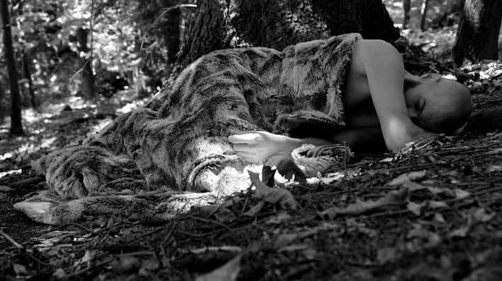 Uomo - bosco - sogno - Cedegolo
