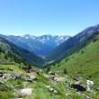 montagna alta valle camonica messi valmalza sole caldo