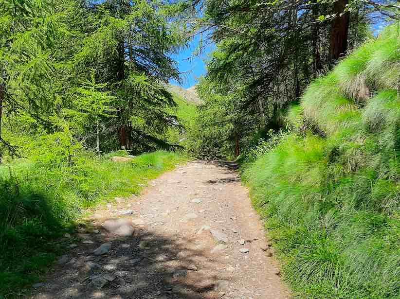 passeggiata montagna running corsa mtb bici escursioni