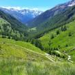 valle delle messi escursione passeggiata montagna gavia
