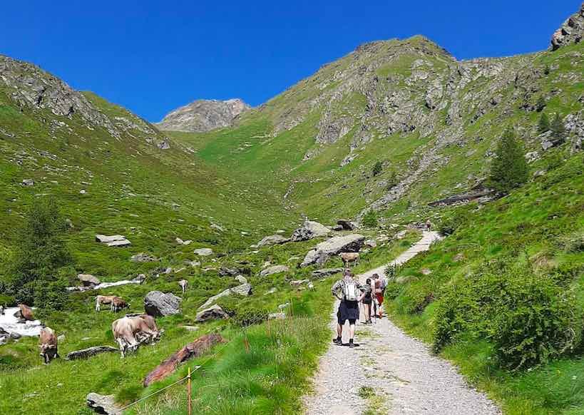 valmalza valle messi montagna natura camminata outdoor