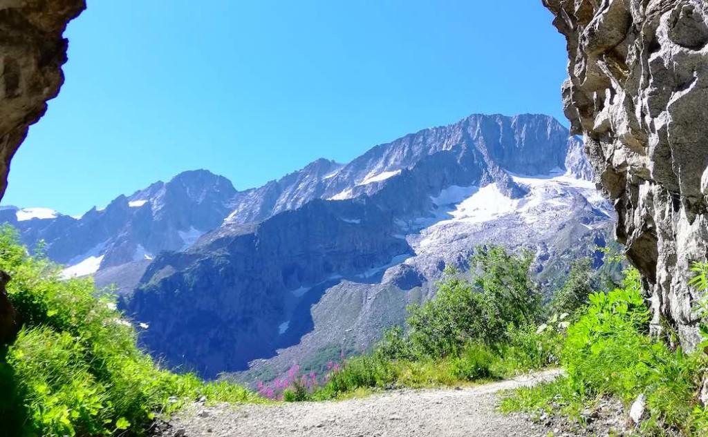 montagne estate passeggiate val di sole presanella