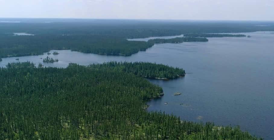 La taiga le foreste del grande nord - foto credit Sondrio Festival