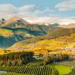 provincia bolzano alto adige fiera