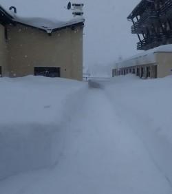 PassoTonale neve